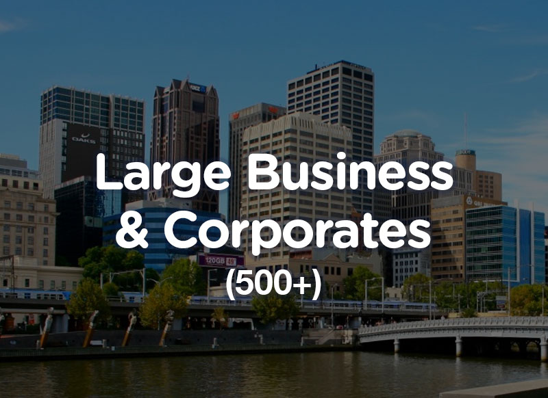 Large & Corporate Business